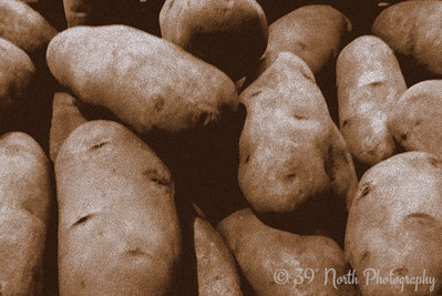 Idaho Potatoes by Laurie H.