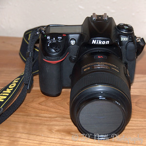 Nikon by Laurie H.