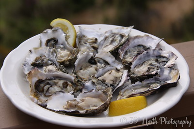 Orcas Oysters - YUM!! by Karen B.