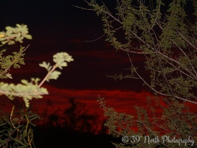 Red Sky by Lynn