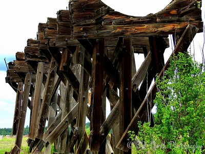 Old railroad trestle by Norma