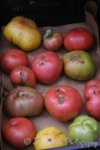 T is for Tomatoes by Barb