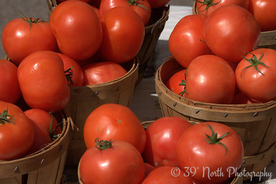 Tons o' Tomatoes by Laurie