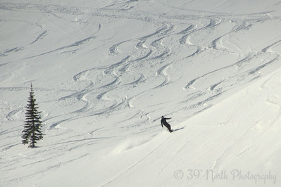 Backcountry Snowboarder by Laurie H.
