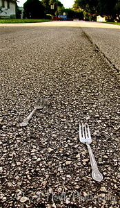 Forks in the Road by Mikki K.