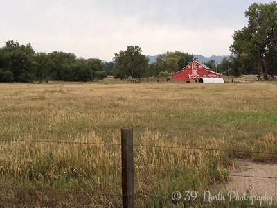 Farm by Pam G.