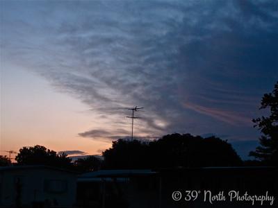 Flight of the Dawn Bird by Mikki K.
