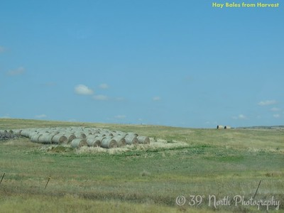 Hay Bales from Harvest by Sandi P.