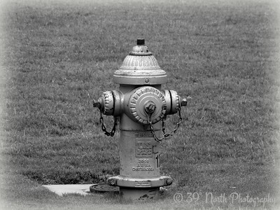 Fire Hydrant by Dave T.