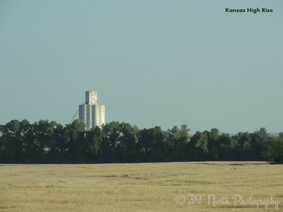 Kansas High Rise by Sandi P.