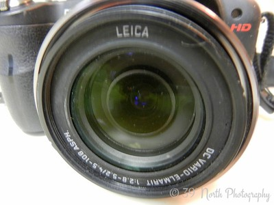 Lens by Norma H.