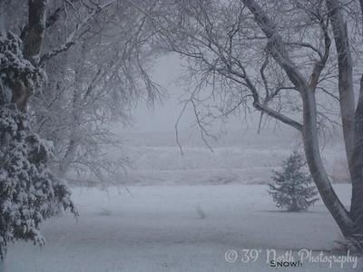Snow!! by Sandi P.
