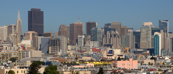 San Francisco Skyline by Laurie H.