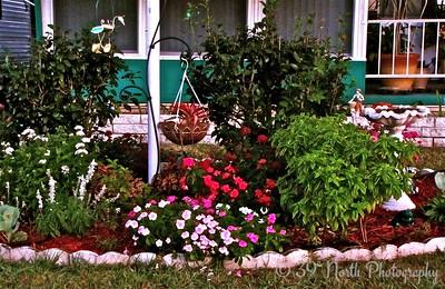 Garden Variety by Mikki K.