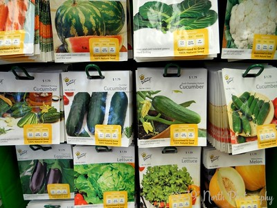 Vegetable Seeds by Dave T.