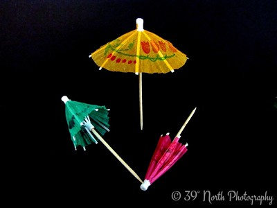Baby Umbrellas by Dave T.