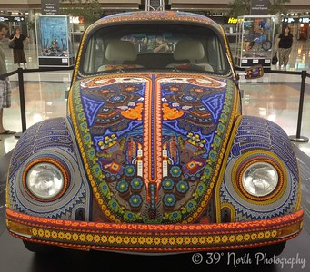 Volkswagen by Laurie H.