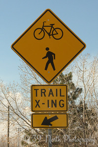 Trail X-ing by Laurie H.
