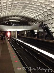 DC Metro Lines by Sandra K.