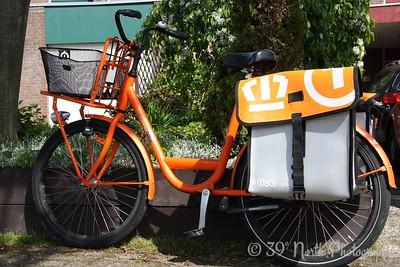 Orange by Anita J.