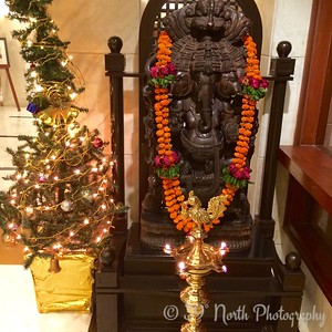 Contrast: Christmas Tree and Hindu God Ganesh by Dave T.