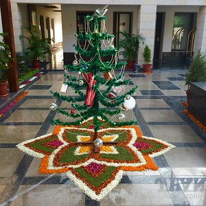 Christmas Tree in India by Dave T.