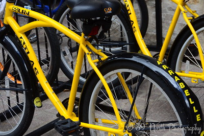 Yellow Bikes by Laurie H.