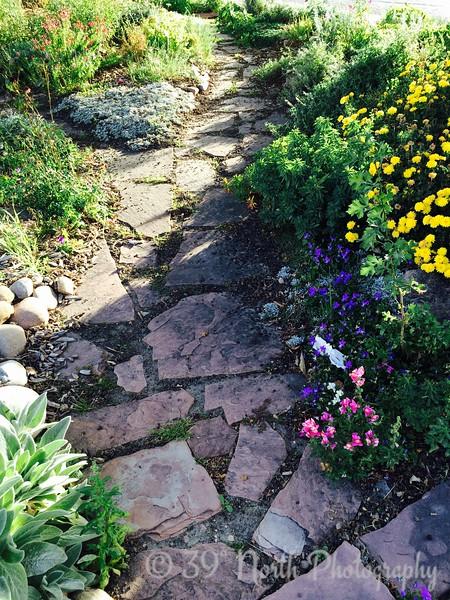 Pretty Rock Pathway by Betty S.