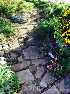 Pretty Rock Pathway by Betty S.
