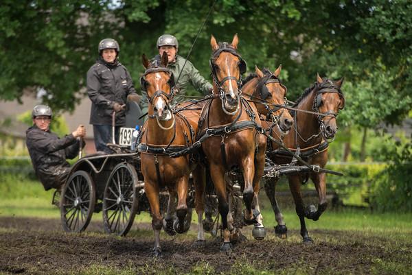 Fotografie Slabroekse Paardendagen 2016