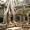 "Ta Phrom is known as the ""Tomb Raider"" temple, since some of the scenes from the Angelina Jolie movie were filmed here."
