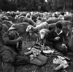 Robert Doisneau 1958, a bivouac lunch