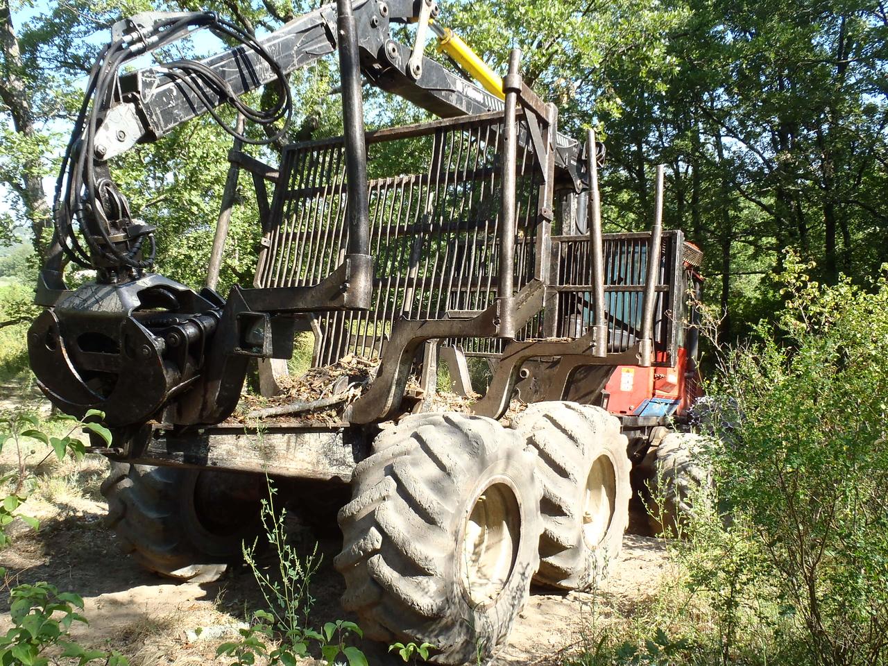 Logging near Lacoste