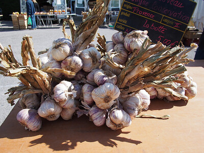 Local garlic. Saturday market, Le Petit Palais