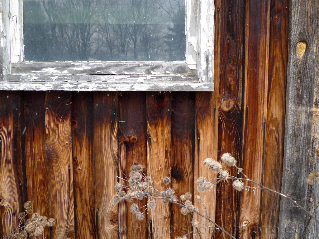 Weathered siding at Cornell University's Arnot Teaching and Research Forest.