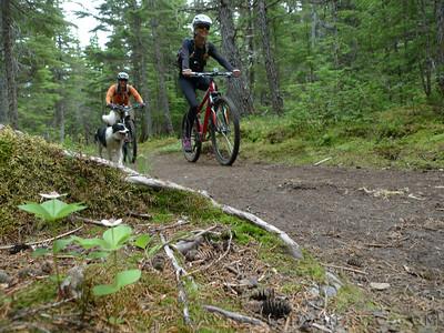 Riding bikes up Primrose Trail.