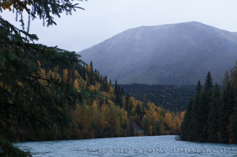 2017 09 23: Kenai River at nearly 16,000 CFS. Cooper Landing, AK