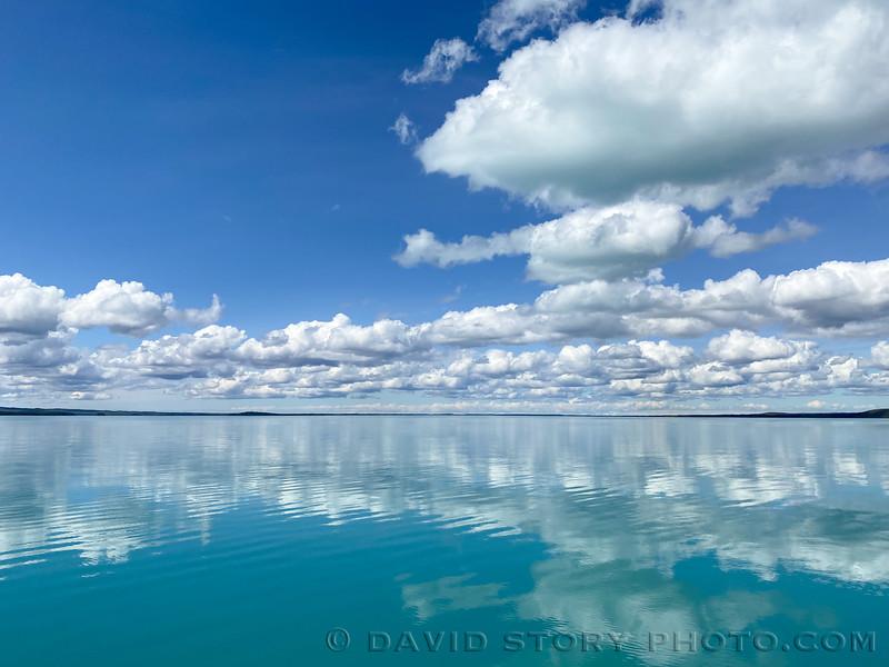 2020 05 27: When Skilak smiles it is hard not to smile too. Skilak Lake, Alaska.