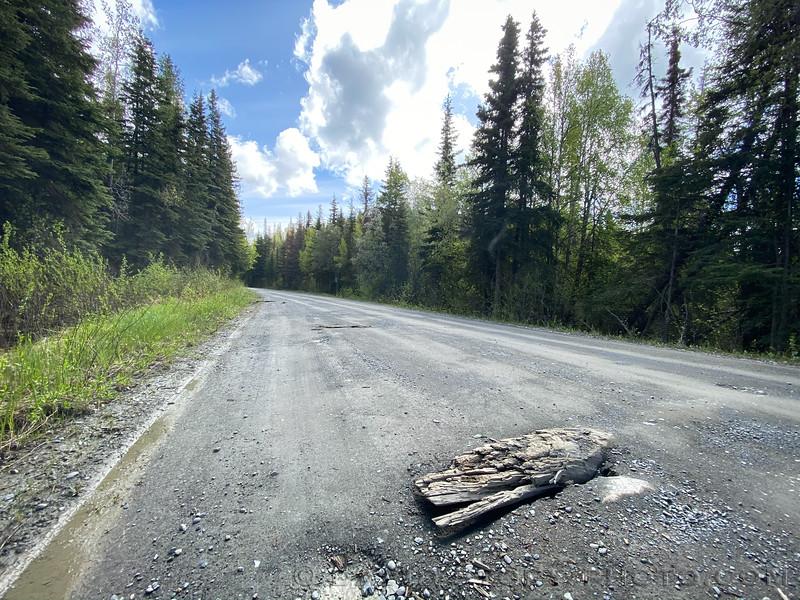 20200527: Old corduroy along Skilak Loop Rd. Alaska