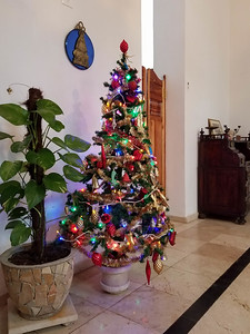 Christmas tree in our casa particular