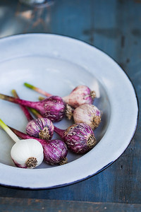 purple Garlic in a bowl