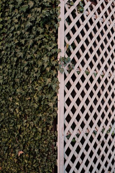 Pattern Contrast