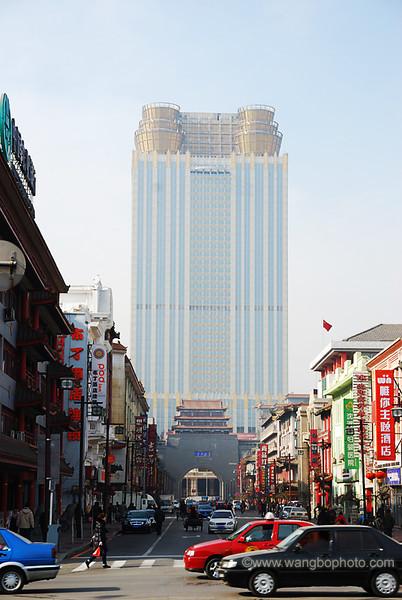 雾凇岛沈阳之旅 - 一镜收江南 - 清韵
