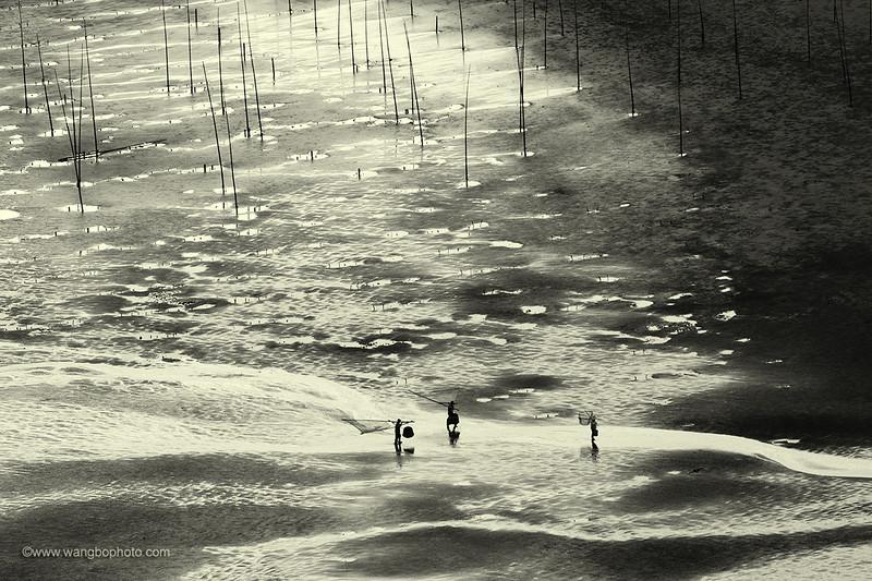 小皓 - 滩涂的魅力 - 一镜收江南 - 清韵