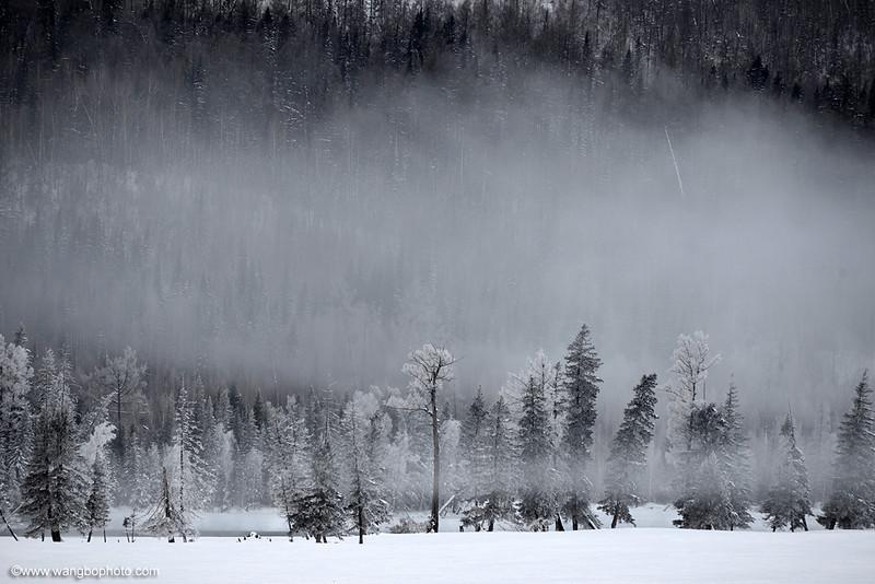 冬季喀纳斯禾木行摄攻略 - 一镜收江南 - 清韵
