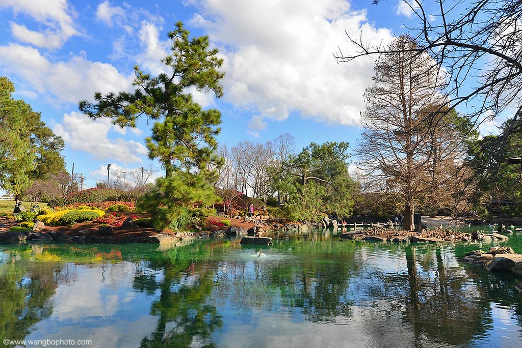 �±��ձ��� - Auburn Japanese Garden - һ���ս��� - ����