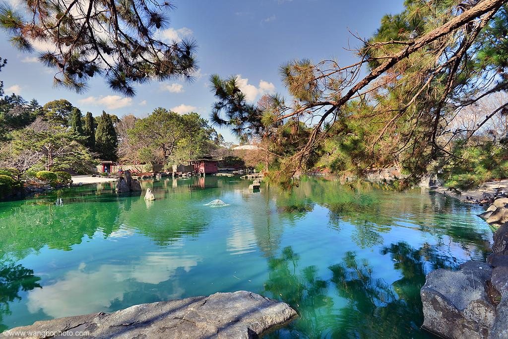 奥本日本花园 - Auburn Japanese Garden - 一镜收江南 - 清韵