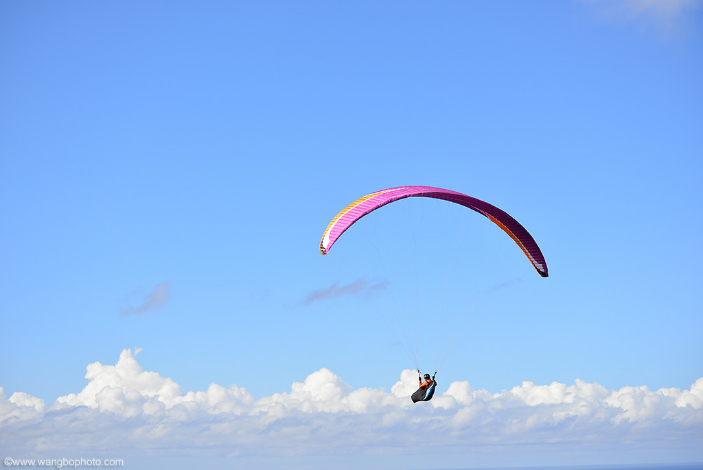 Stanwell Tops降落伞滑翔 - 一镜收江南 - 清韵