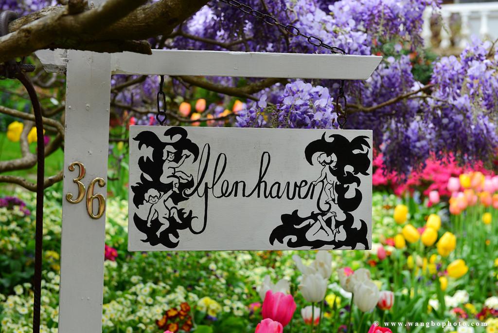 悉尼周末好去处 - 去卢拉花园体验色彩的华尔兹 - 一镜收江南 - 清韵