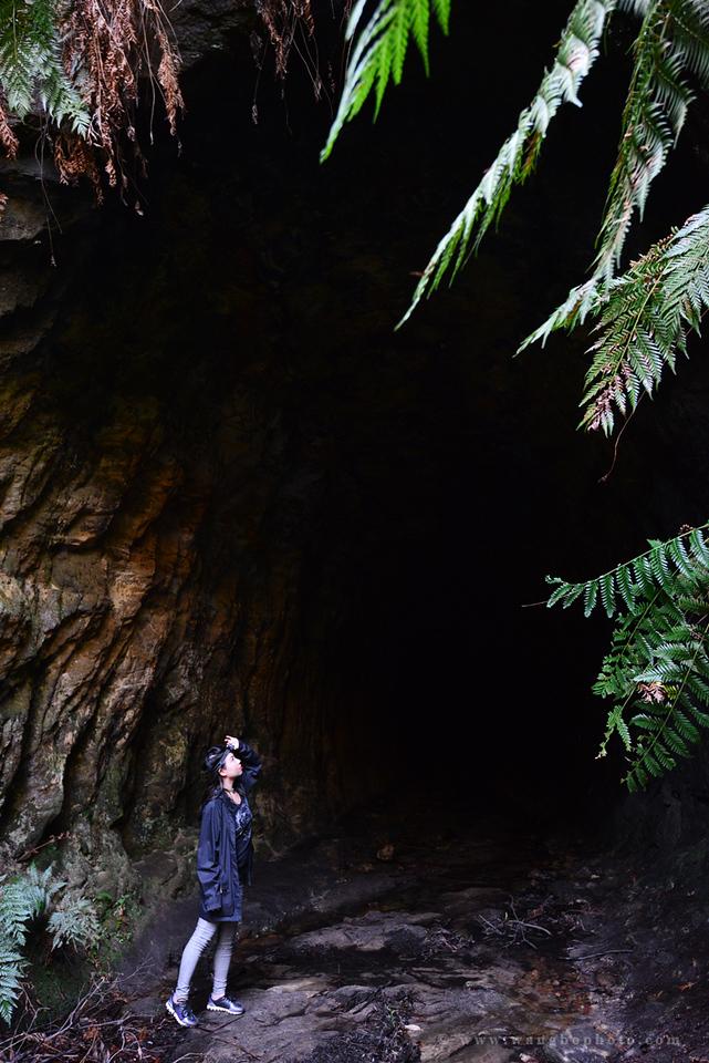 黑暗中的蓝色精灵 -- 探访澳大利亚新州蓝色萤火虫洞 - 一镜收江南 - 清韵